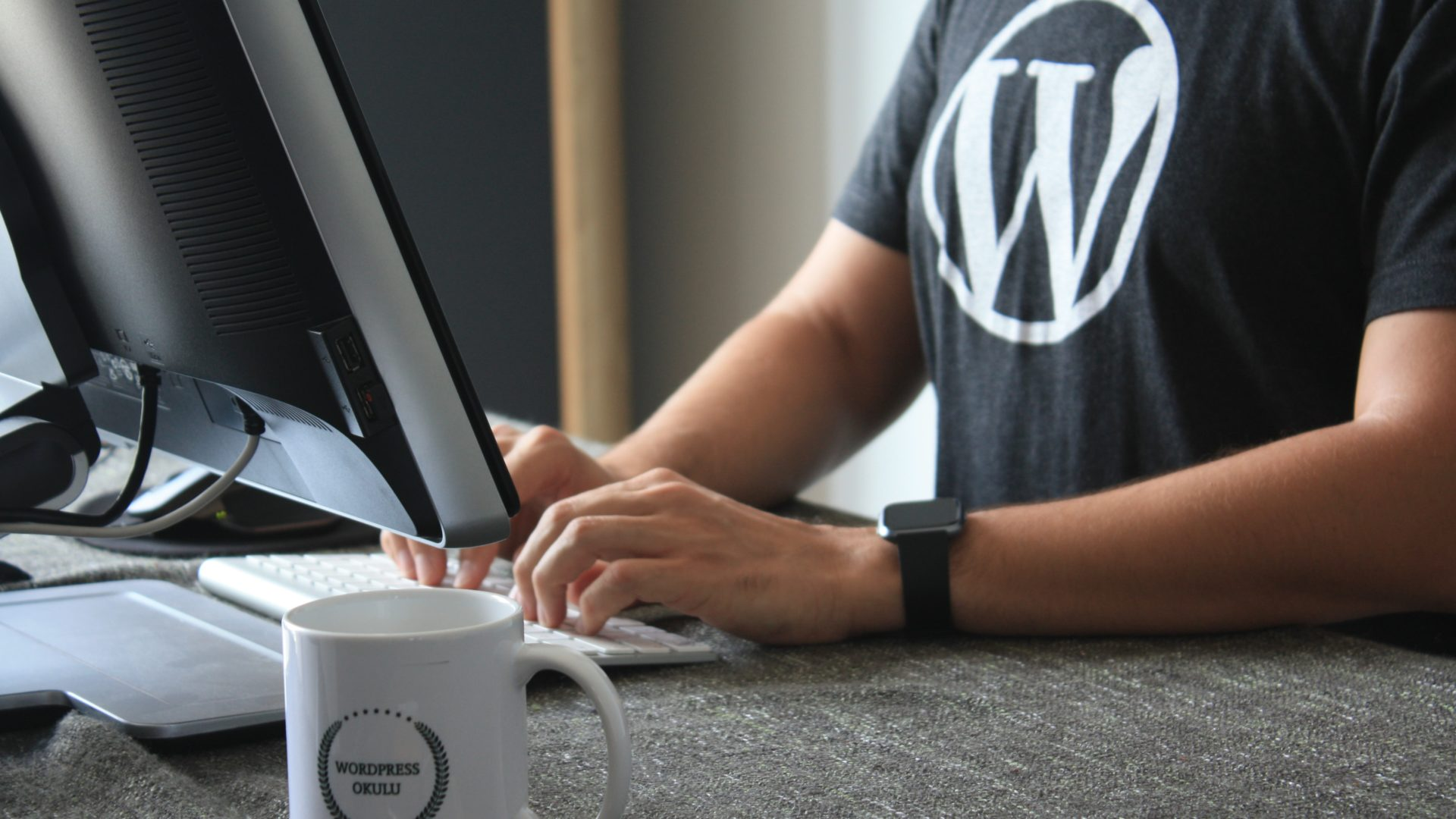 Logotyp Wordpress